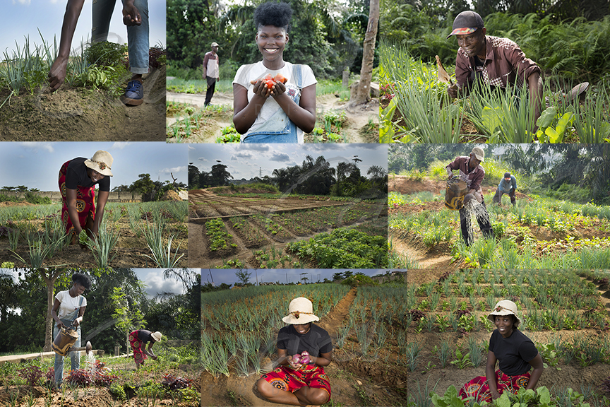 Stock images of farmers in Nigeria
